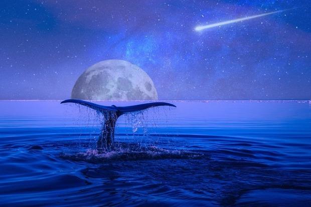 moon-2728183_640